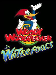 Woody wood pecker - In waterfools