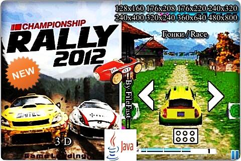 Championship Rally 2012 / Чемпионат по раллийным гонкам 2012